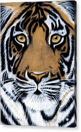 Tiger Tiger Burning Bright Acrylic Print