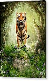 Tiger Woods Acrylic Print by Julie L Hoddinott