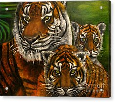 Tigers Family Oil Painting Acrylic Print by Natalja Picugina