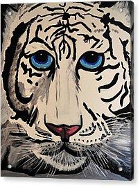 Tigger Acrylic Print by Nora Shepley