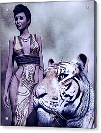 Tigress Acrylic Print by Maynard Ellis