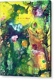 Tikal Acrylic Print by James Douglas Draper