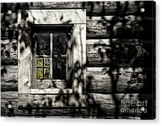 Acrylic Print featuring the photograph Timber Hand-crafted by Brad Allen Fine Art