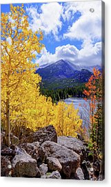 Acrylic Print featuring the photograph Time by Chad Dutson