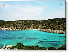 Time For A Swim Acrylic Print by Jacqueline Doulis