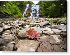 Time For Change Acrylic Print by Kristopher Schoenleber