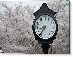 Time For Spring Acrylic Print by Dan Friend