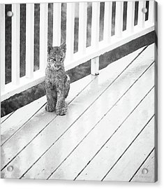 Time Out Bw Acrylic Print