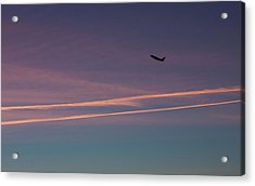 Acrylic Print featuring the photograph Time To Go by Lora Lee Chapman