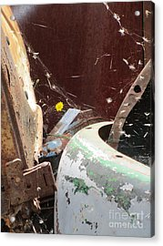 Acrylic Print featuring the photograph Timeless Wish by Marie Neder
