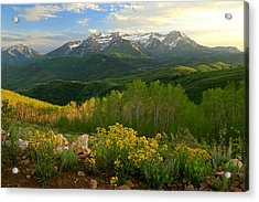 Timpanogos From Mill Canyon Peak. Acrylic Print by Johnny Adolphson