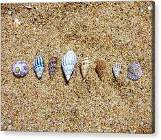 Tiny Seashells On The Sand Acrylic Print