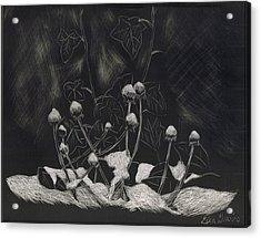 Tiny Snow Caps Acrylic Print by Lisa Guarino