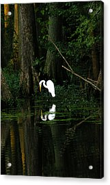 Tiptoe 2 Acrylic Print by Don Prioleau
