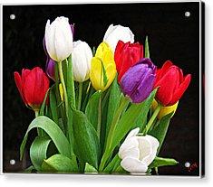 Tiptoe Through The Tulips Acrylic Print