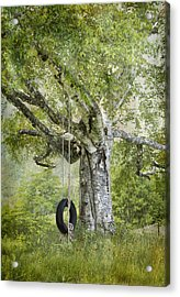 Tire Swing Hanging Off A White Birch Acrylic Print by Betty  Pauwels