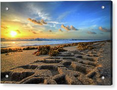 Tire Tracks In Sand Sunrise Acrylic Print