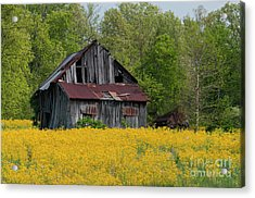 Acrylic Print featuring the photograph Tired Indiana Barn - D010095 by Daniel Dempster