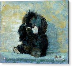 Titli Bear Acrylic Print
