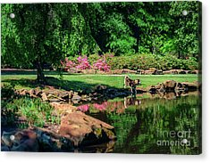 Taking A Break At The Azalea Pond Acrylic Print