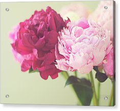 Acrylic Print featuring the photograph To Have And To Hold by Amy Tyler