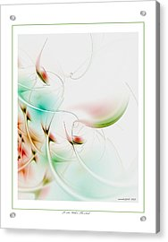 To Look Within The Seed Acrylic Print by Gayle Odsather