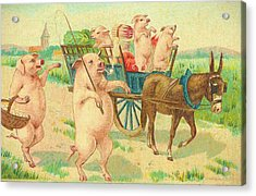 To Market To Market To Buy A Fat Pig 86 - Painting Acrylic Print