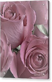 To My Sweetheart Acrylic Print by Sherry Hallemeier