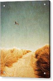 To The Beach Acrylic Print by Wim Lanclus