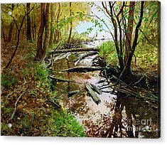 Acrylic Print featuring the painting To The Lake by Sergey Zhiboedov