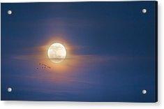 To The Moon Acrylic Print