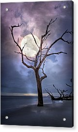 To The Moon Acrylic Print