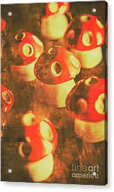 Toadstools From Old Worlds Acrylic Print