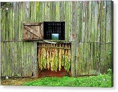 Tobacco Barn Acrylic Print by Ron Morecraft