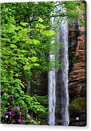 Toccoa Falls In Georgia Acrylic Print by Eva Thomas