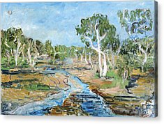Todd River Acrylic Print by Joan De Bot