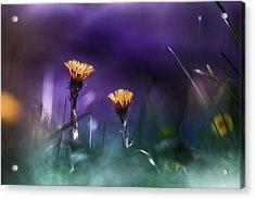 Together Acrylic Print by Bulik Elena