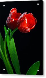 Togetherness Acrylic Print by Dung Ma