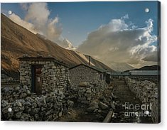Acrylic Print featuring the photograph Toilet by Mike Reid