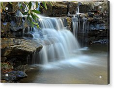 Tolliver Fall Acrylic Print by Dung Ma