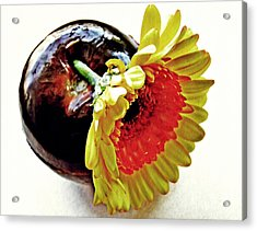 Tomato And Daisy Acrylic Print by Sarah Loft