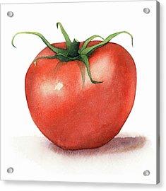 Tomato Watercolor Acrylic Print