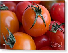 Tomatoes  Acrylic Print by A New Focus Photography