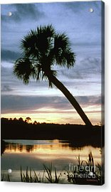Tomoka River Sunset Acrylic Print