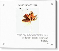 Tomorrow's Zen  Acrylic Print by Steven Digman