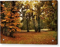 Tones Of Autumn Acrylic Print by Jessica Jenney