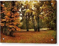 Tones Of Autumn Acrylic Print