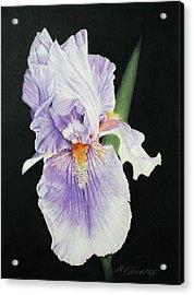 Tonto Basin Iris Acrylic Print by Marna Edwards Flavell
