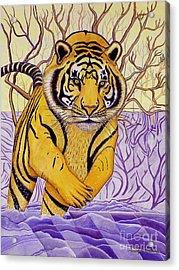 Tony Tiger Acrylic Print by Joseph J Stevens