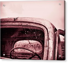 Acrylic Print featuring the photograph Too Old To Drive by Mary Hone